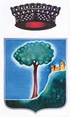 logo-comune-carpineti